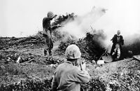 WWII photo American Marines take prisoner of a wounded Japanese  Okinawa war 7o