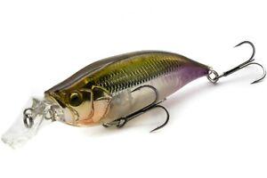 fishing lure MEGABASS IxI SHAD TYPE-R / HT WAKASAGI