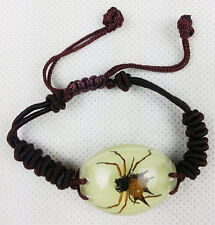 NEW Jewelry Fashion Bracelet Charm With Spiny Orb-weaver Spider Insect Specimens