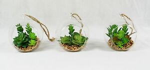 Mini Cactus in Glass Bowl, Artificial Succulent Arrangement for Home & Office