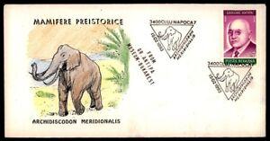 ROMANIA FOSSILS PREHISTORY ELEPHANT FOSSIL PALEONTOLOGY dk05