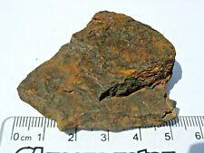 New listing 61 grams Durango Oxide fragment oxidite Meteorite found in Australia low iron