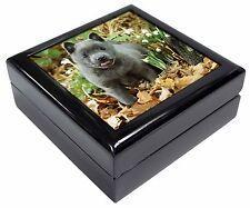 More details for blue schipperke dog keepsake/jewellery box christmas gift, ad-bs1jb