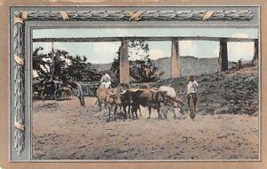 JAMAICA ~ OLD AQUEDUCT, OX CART & ITS DRIVER, CARRIAGE, GARDNER PUB 1907-20