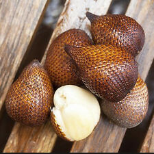 20pcs Snake Fruit Seeds Healthy Delicious Miracle Fruit Rare Plant For Home