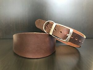 Heavy Duty BROWN Real Leather Dog Collar Greyhound Lurcher Whippet Saluki LARGE