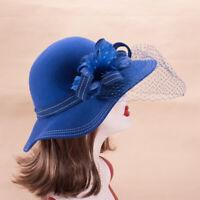 Womens Feather Netting Wool Felt Wide Brim Floppy Winter Dress Hats X631