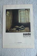 SUEDE - DOG MAN STAR - ADVERT 21 x 30cm.