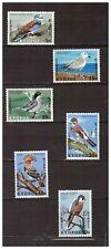 14456) CYPRUS  MNH** 1969 Birds 6v