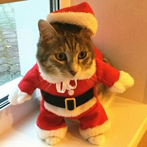 Funny Santa Claus Clothes for Small Cats Dogs Clothing Winter Pet Outfits New