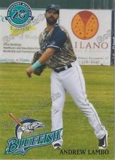 2017 Bridgeport Bluefish Andrew Lambo Atlantic League Independent