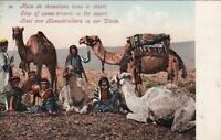 Postcard Camel Drivers Stop in the Desert Egypt