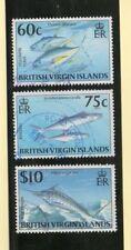Islas Virgenes Fauna Marina Peces año 1996 (DN-697)