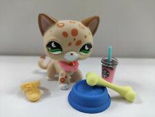 Lps Great Dane Dog #MINI Deco Littlest Pet Shop Brinquedos Cinza Padrão Cachorro Olhos Azuis