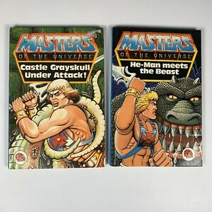 Vintage 80s Ladybird Masters Of The Universe - He-Man Books. 2 Books