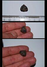 1 Cristal de Thorite des mines de Mongok  5,90 g / Birmanie / thorium / minéraux