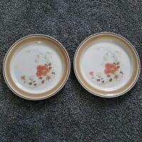 "2 Water Colors Hearthside 10 3/4"" Dinner Plates Blush Japan Stoneware"