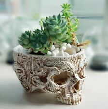 Skull Planter Pot Succulent Plant | Flowerpot | Ceramic Bowl | NEW | Garden