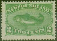 Newfoundland 1882 2c Yellow-Green SG46 Fine Mtd Mint