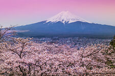 Superbe Japon Mont Fuji paysage toile #394 Wall Hanging photo art A1