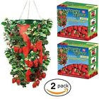 Topsy Turvy Upside Down Strawberry Planter. Pack of 2. BRAND NEW.