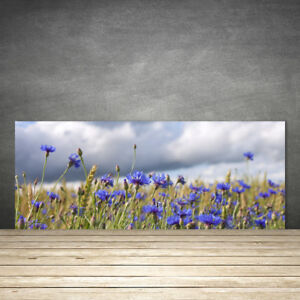 Tulup Kitchen Splashback 125x50 Tempered Glass Flowers Floral