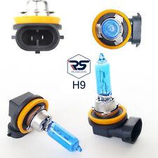 2 x H9 55W 12V Halogen Leuchten Lampen Xenon Optik Style Look Original RUSEDUS®