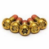 5x Bmw S1000RR Gold Titanium Rear Disc Rotor Bolts With Thread-lock