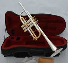 Excellent PRO C Trumpet horn Silver + Gold plated Finish Monel Valve With case