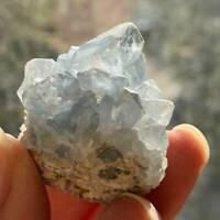 Natural Blue Celestite/Crystal/Druzy/Quartz Geode Crystal Cluster Specimen Reiki