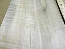 "Maple Spalted Figured wood veneer 8"" x 48"" raw with no backing ""A"" grade 1/42"""