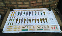 Poster Military Uniforms Instruction Original Army Soviet USSR Full set 9 pcs.