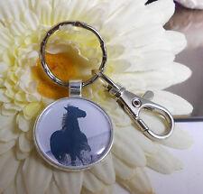 Schlüsselanhänger Taschenbaumler Pferd Harz Cabochon Karabiner Ring