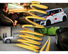 Apex Car Performance Lowering Springs & Kits