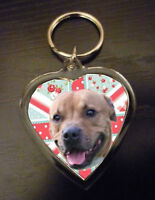 Keyring Staffordshire Bull Terrier Gift Staffie Birthday Gift Mothers Day Gift