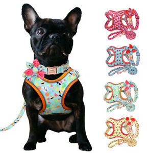 Personalised Dog Collar &Harness &Lead set for Walking Small Medium Large Dogs