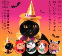 Costume for Kitan club Halloween cat All 5 set Gashapon mascot toys Complete set