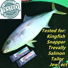 4x 20g ISOGO Japan Micro Slow Jig Jigging with Assist Hook Lumo Kingfish Snapper