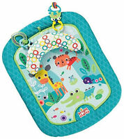 Brand New Bright Starts Tummy Mat Refresh Rattles (10060) Bright and colourful
