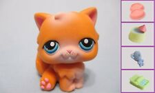 Littlest Pet Shop Cat Persian 153 and Free Accessory Authentic Lps