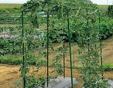 1 Pack Garden 2.95Ft x 5.9Ft Trellis Netting Plant Support Grow Net Green