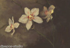"""Orchid Beauties"" Debra Sepos original oil 5"" x 7"" still life Orchidaceae flower"