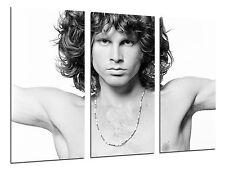 Cuadro Moderno Jim Morrison, Leyenda Musica, ref. 26498