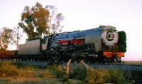 PHOTO  SOUTH AFRICAN RAILWAYS CLASS 25NC 4-8-4 NO 3444 WITH A FREIGHT TRAIN AT S