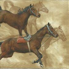 3 Servietten Napkins Tiere Pferd Reitsport #303