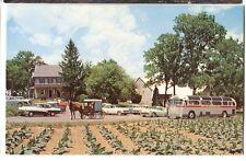 Vintage Chrome Amish Gray Line Sightseeing Tour Bus Lancaster Pa Postcard
