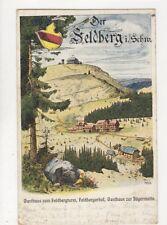 Der Feldberg i Schw Germany Vintage Postcard 747a