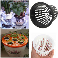 10Pcs Lightweight Planting Net Basket Flower Pot Hydroponic Aquatic Water Plant