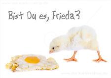 A6 Postkarte Grußkarte Tiere witzige Karte Küken Spiegelei Bist Du es Frieda?