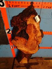 "#A602   1 13/16"" THICK  cherry burl live edge slab shelf end table bench"